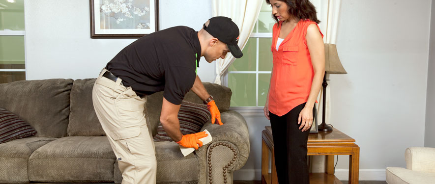 Jacksonville, IL carpet upholstery cleaning